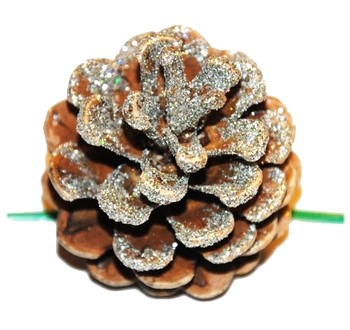 Šišky - Vánoční dekorace - Borovicová šiška stříbrná