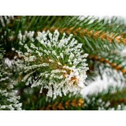 Umělý vánoční stromek - Smrk Beskydský 220 cm